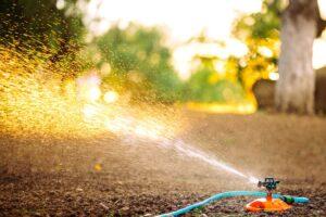 O czym musimy pamiętać przy nawadnianiu ogrodu?